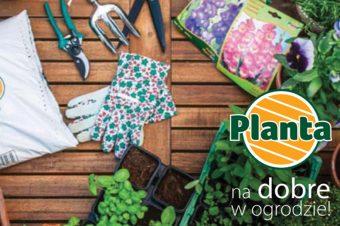 Promocja produktów PLANTA